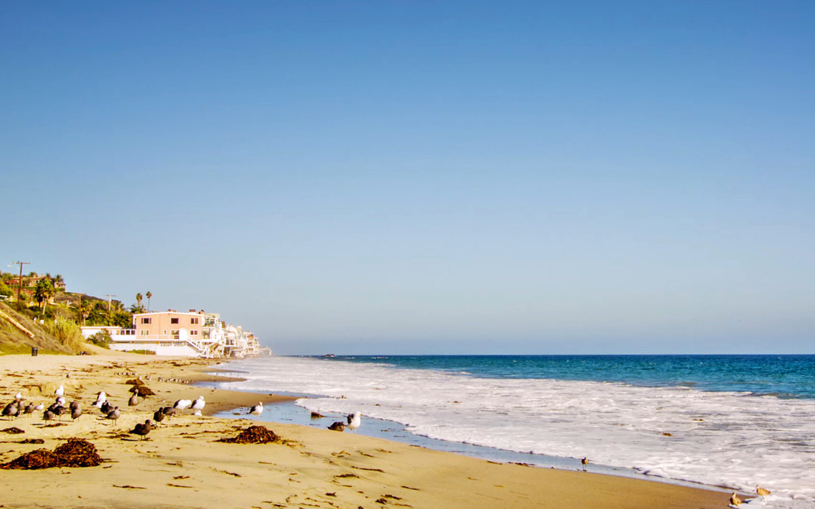 Best Beaches in Southern California (Video)