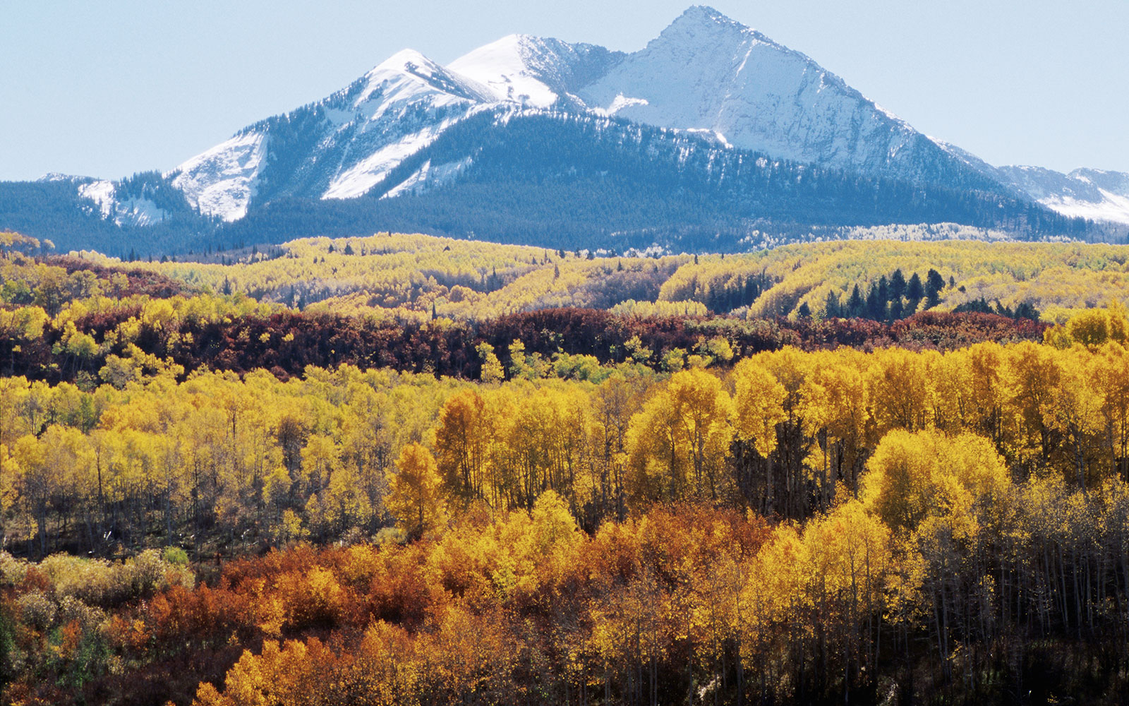 Mountiain view and foliage at West Elk Loop Scenic in Gunnison-Crested Butte, CO