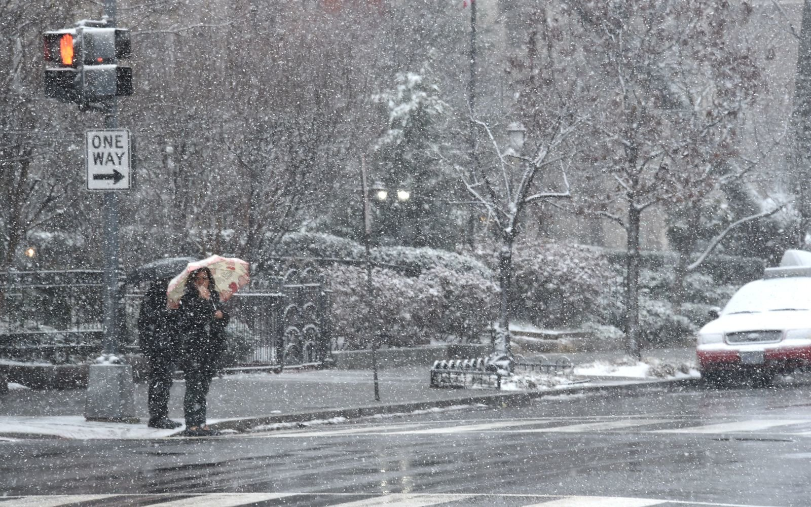 Nor'easter snow