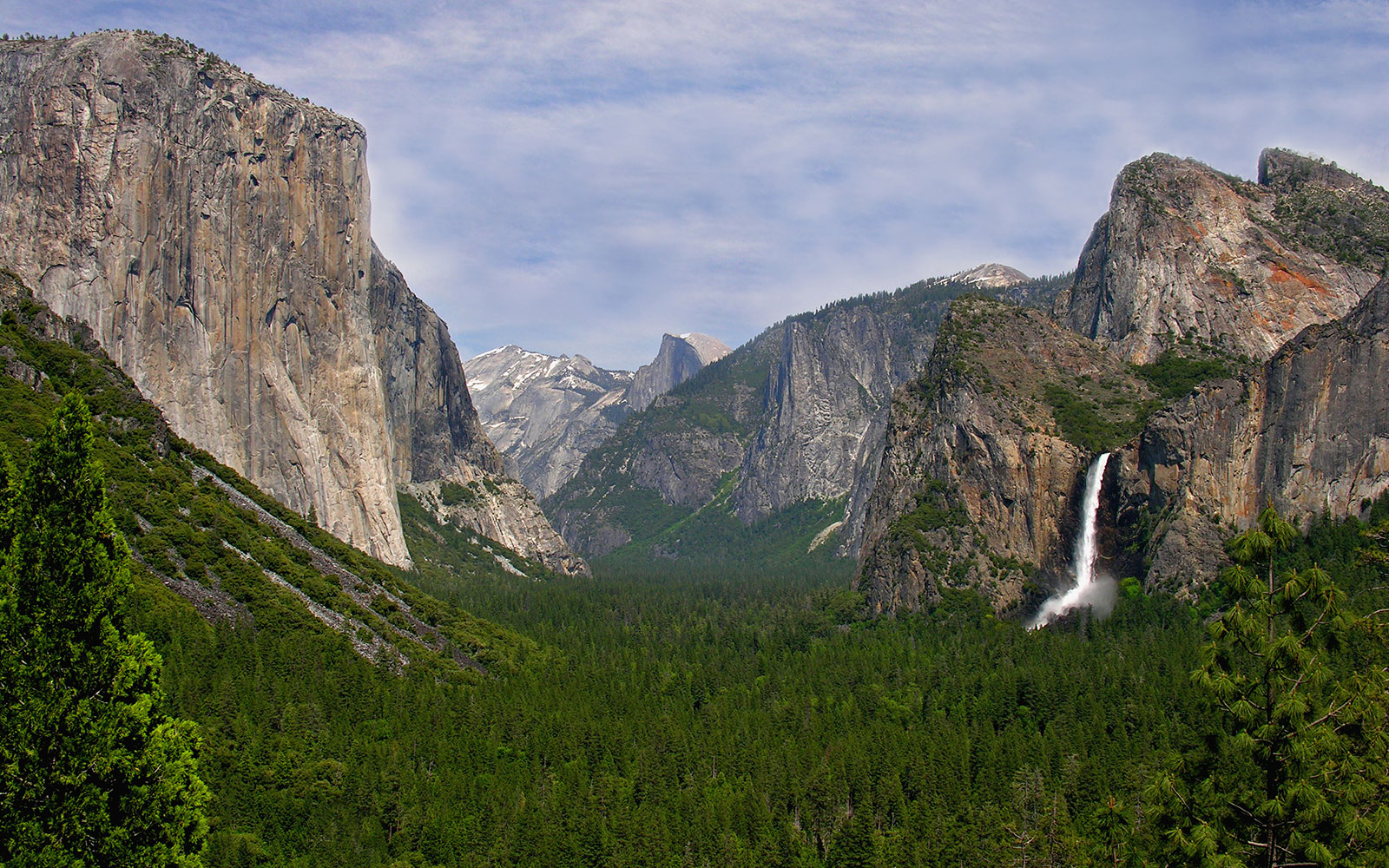 Child Contracts the Plague After Trip to Yosemite National Park
