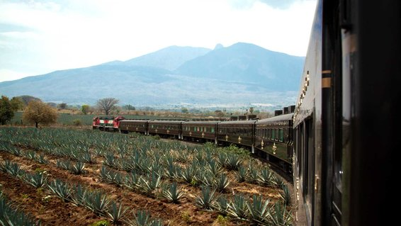 Jose Cuervo Express train to Tequila, Mexico