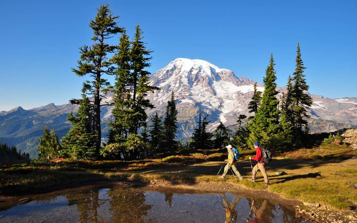 Hikers, Mount Rainier National Park, Washington