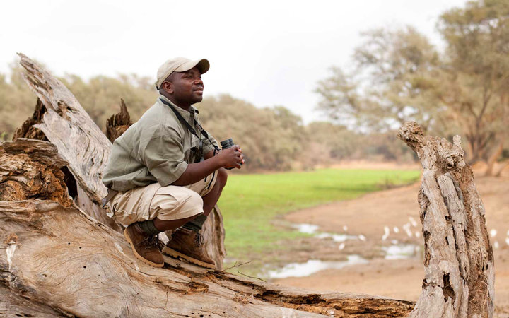 Learn to Be a Safari Guide