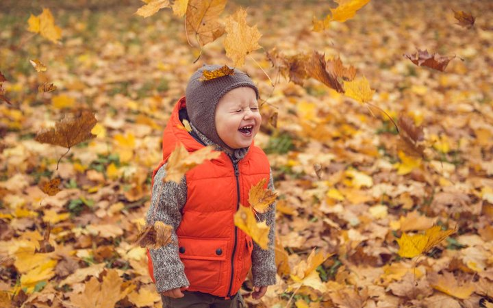 Smiling Baby Playing in Autumn Leaves