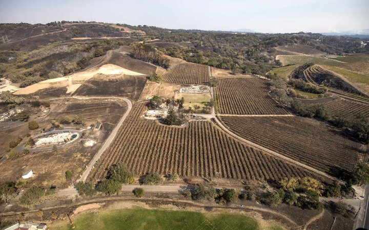 Santa Rosa Wine Region Destroyed