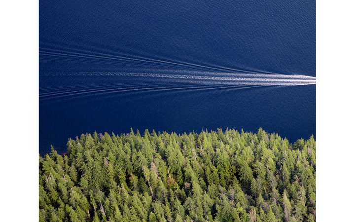 Overhead view of trees and water as a boat passes