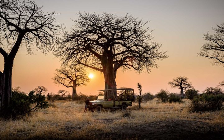 Breakfast game drive in Ruaha National Park, Tanzania