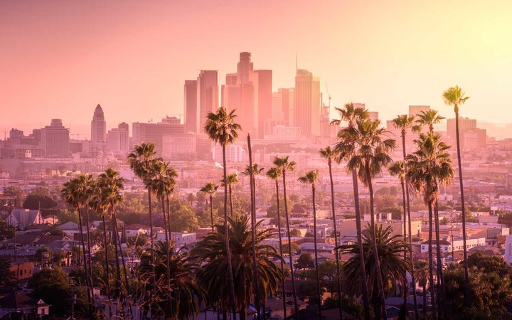 The Los Angeles skyline, with palm trees, and a pink sky