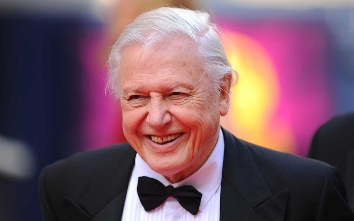 You and a friend could have breakfast and a private museum tour with Sir David Attenborough.