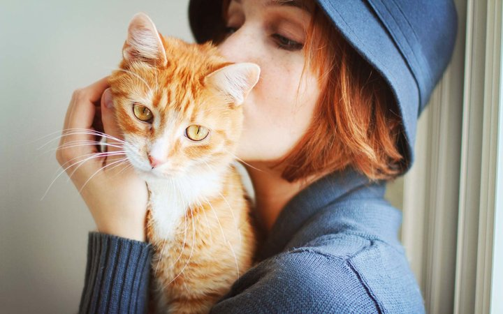 Young redheaded girl holds and kisses an orange and white domestic short hair young cat.