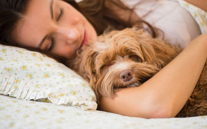 Caucasian woman hugging pet dog in bed