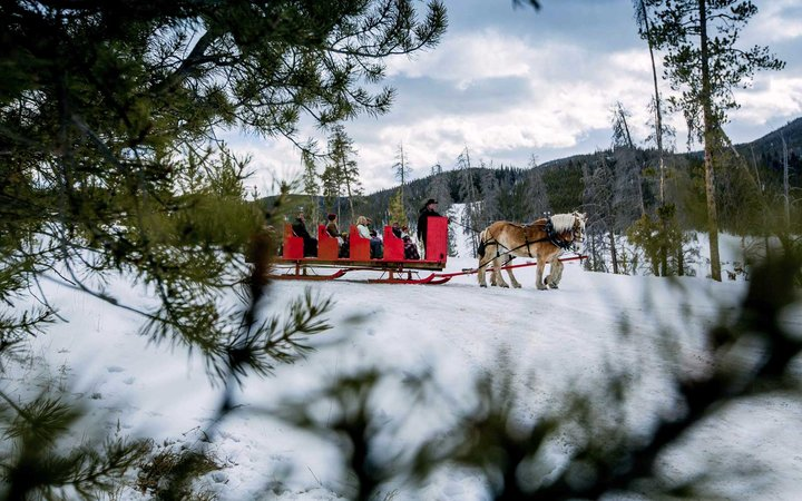 Sleigh ride at Keystone resort