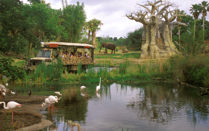 World's Most-Visited Tourist Attractions: Disney's Animal Kingdom, Walt Disney World Resort, Lake Buena Vista, FL