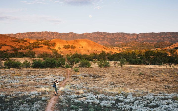 Bush walking in Australia's Flinders Ranges outback