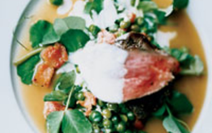 Jenny Zarins Konstam's charcoal-grilled pigeon with braised peas, pea shoots, bacon and creme fraiche.