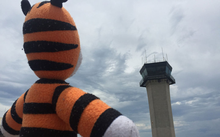 Stuffed Tiger at Tampa International Airport