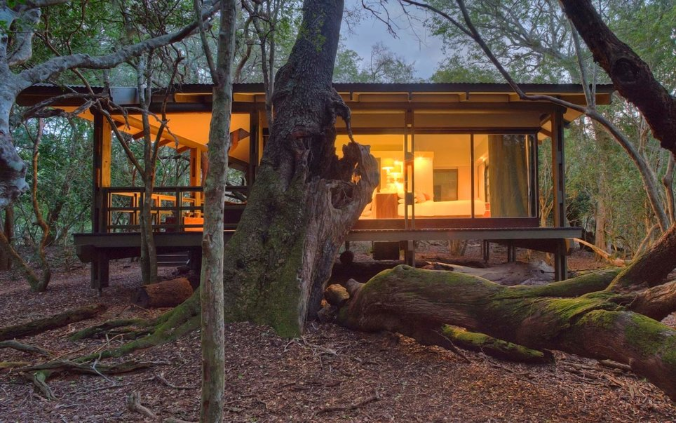 44. andBeyond Phinda Forest Lodge, Phinda Private Game Reserve, South Africa