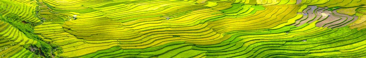 Panorama beauty of terraced fields Tu Le, Yen Bai, Vietnam