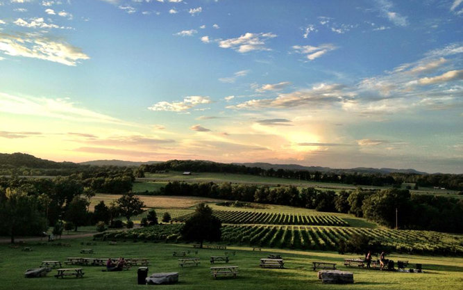 Arrington Vineyards in Nashville