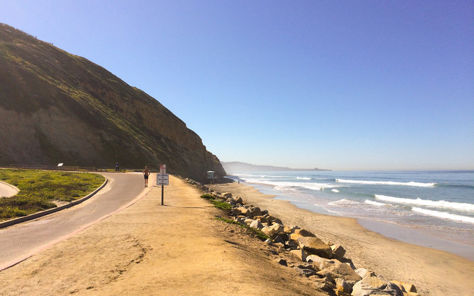 Torrey Pines State Natural Reserve in San Diego
