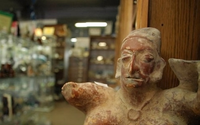 Ancient Artifacts and Treasures Store in Orlando