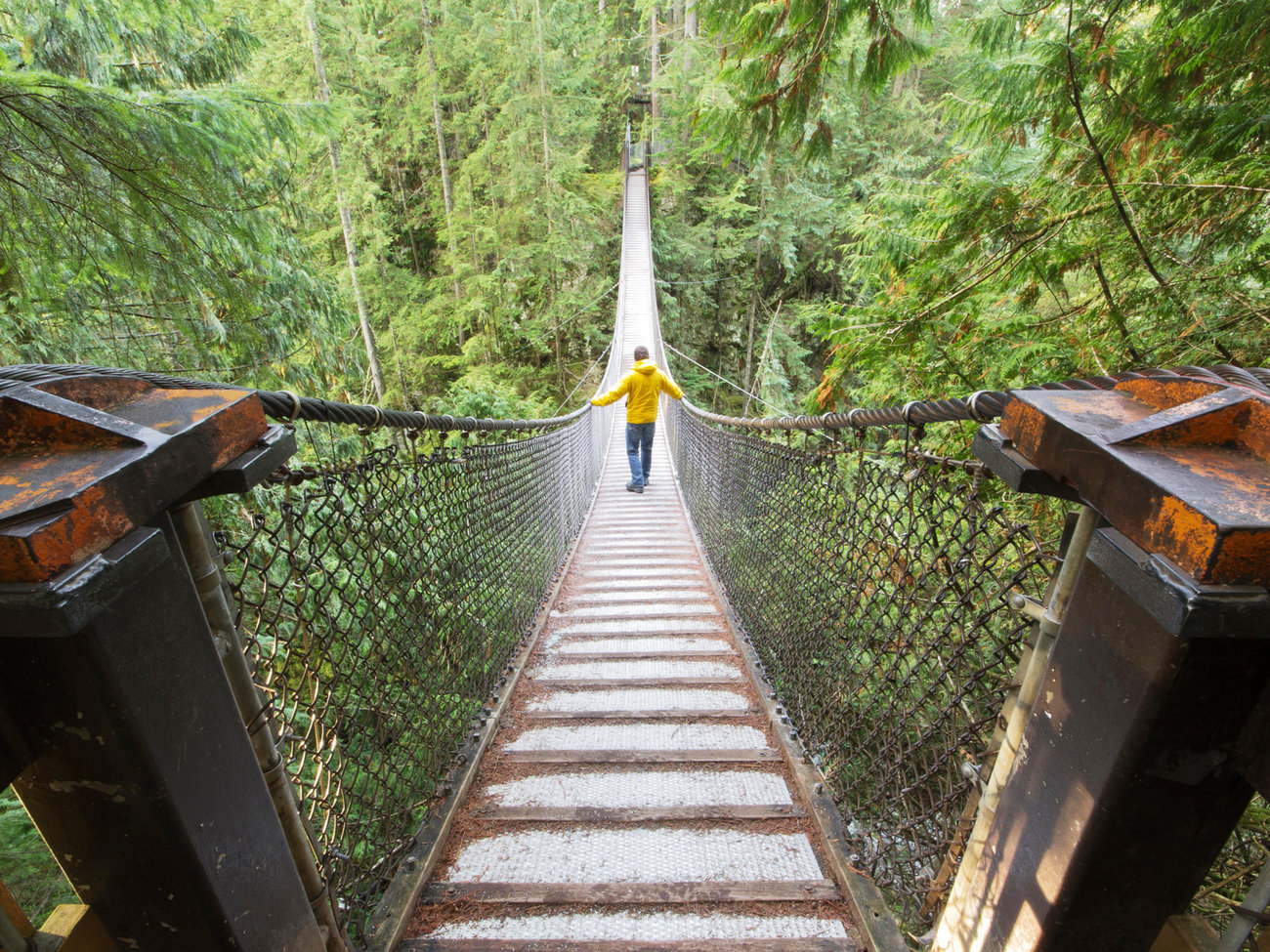 Lynn Canyon Park and Suspension Bridge in Vancouver