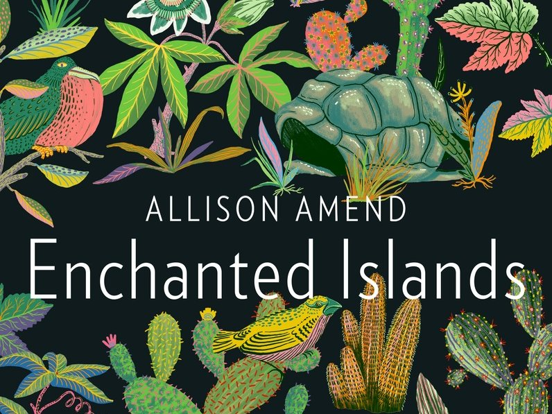 enchanted-islands-cover-BOOKS0116.jpg