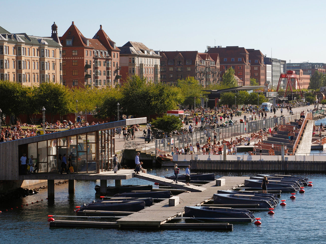 Rent a boat in Harbour Bath at Islands Brygge in Copenhagen