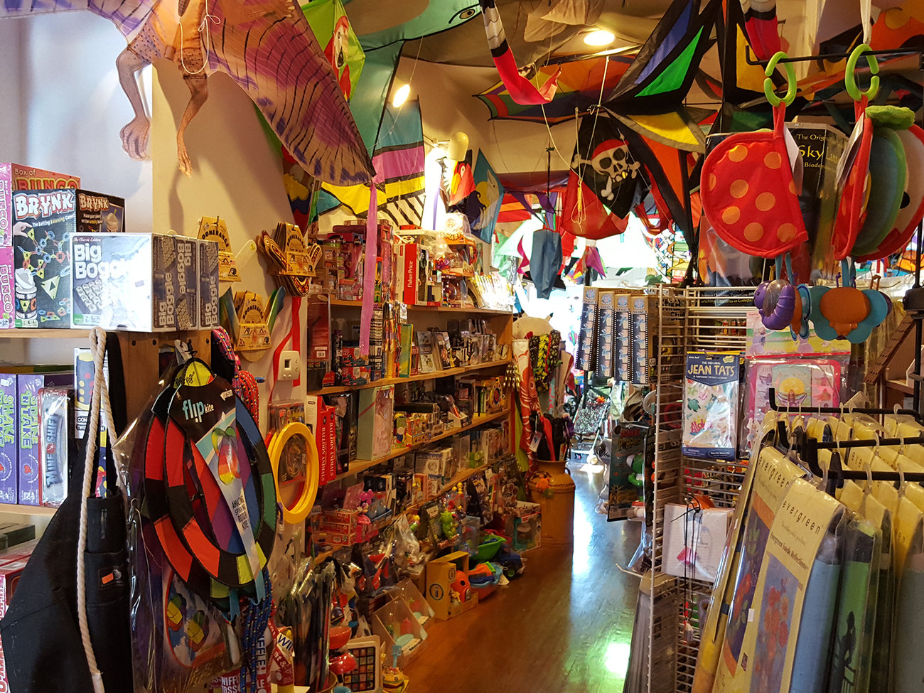 Dr. Gravity's Kite Shop in Cape Cod