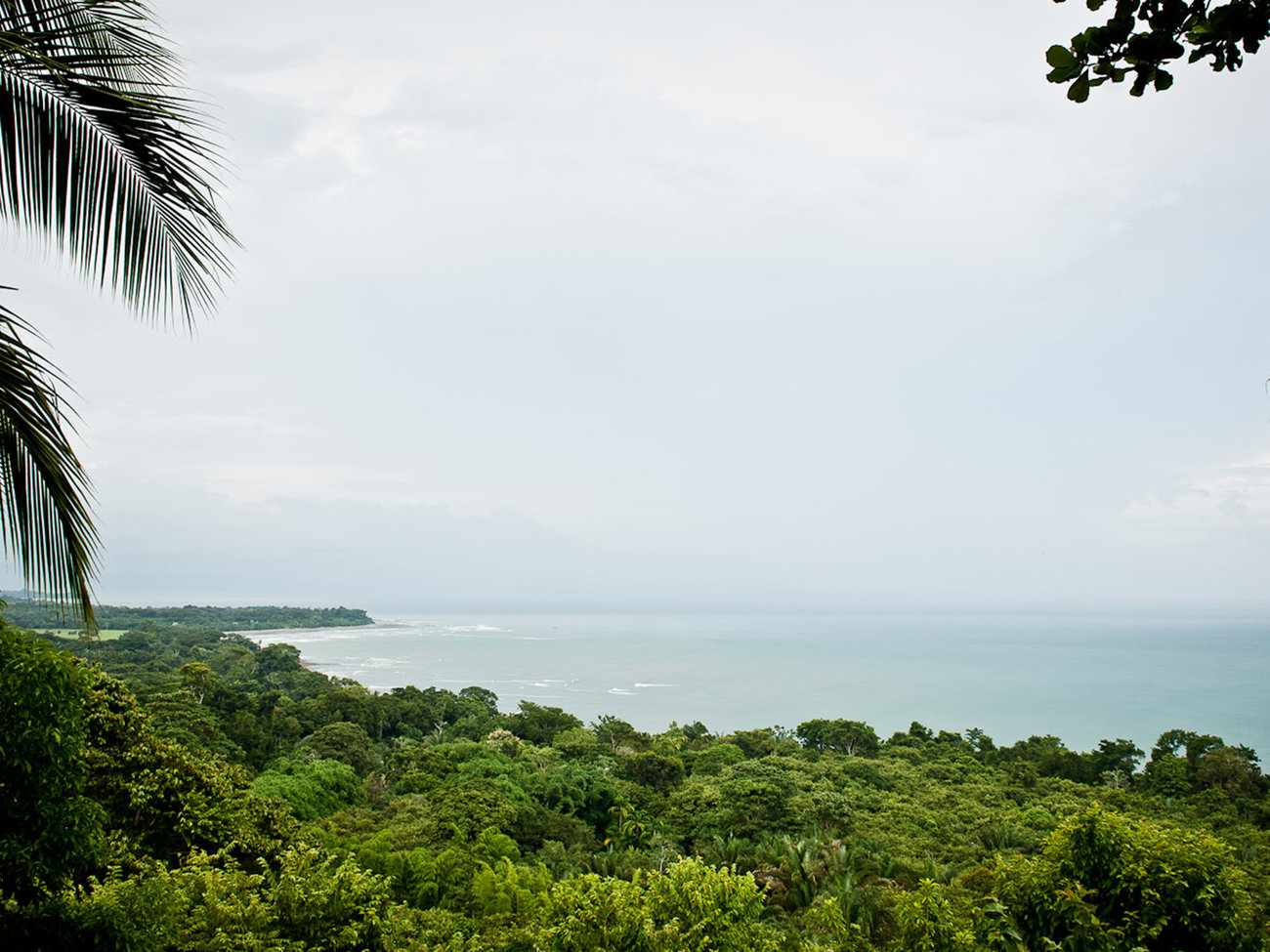 Corcovado National Park in Costa Rica