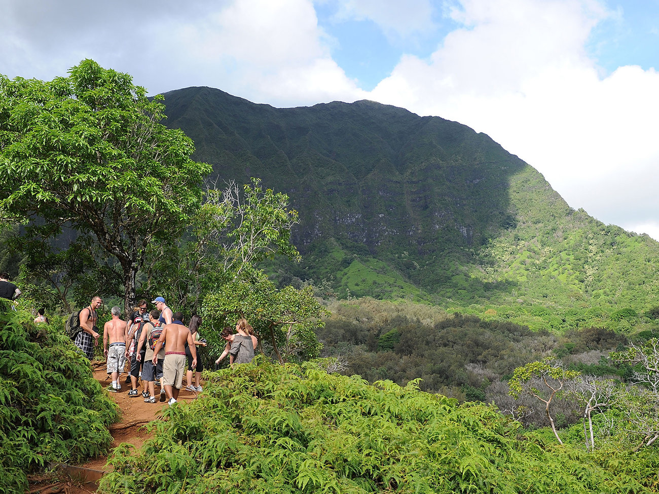 Maunawili Falls Hike in Oahu