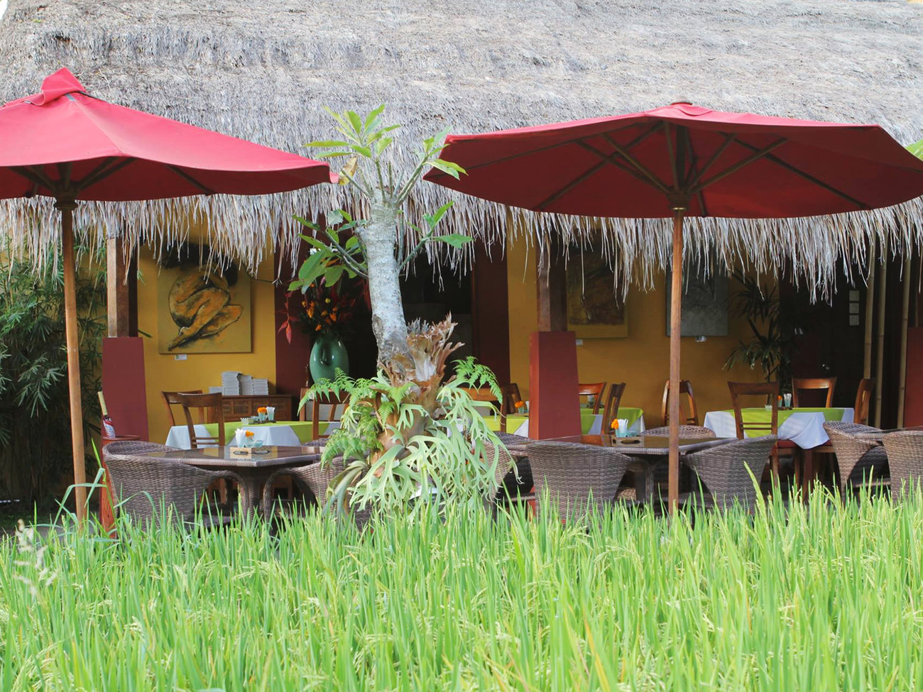 Three Monkeys Restaurant in Bali