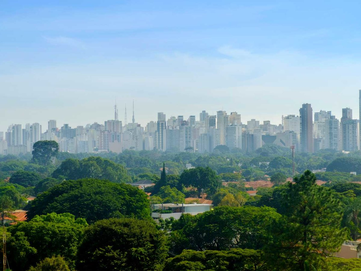 Sao Paulo's Jardins Neighborhood