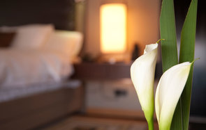Aloft has debuted voice-activated hotel rooms.