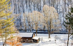 New Year's Eve Plans
