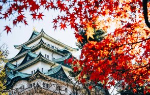 Castle of Nagoya on a late autumn day Japan