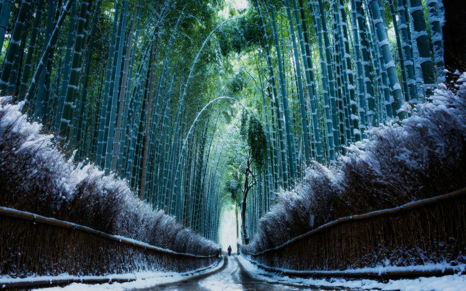 22 winter pictures view beautiful images of winter scenes