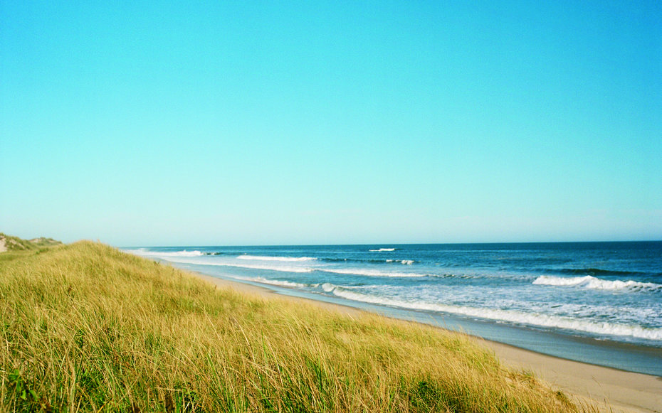 Insider's Guide to the Hamptons