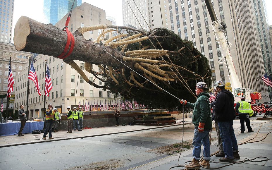 Where the Rockefeller Center Christmas Tree Comes From ...