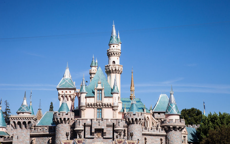 Disneyland For A Day