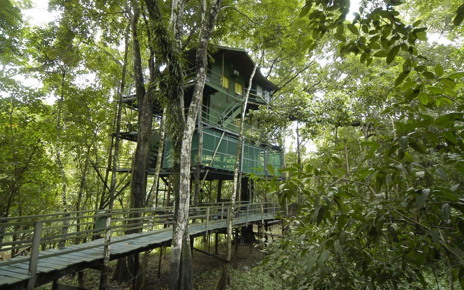 Exellent Coolest Treehouse In The World Ideas