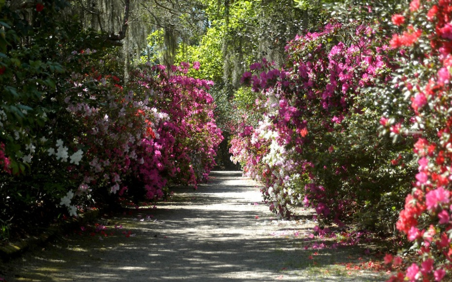 America'S Most Beautiful Gardens | Travel + Leisure