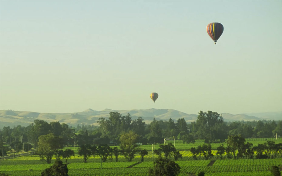 Travel Guide: Napa Valley Vacation + Trip Ideas | Travel +