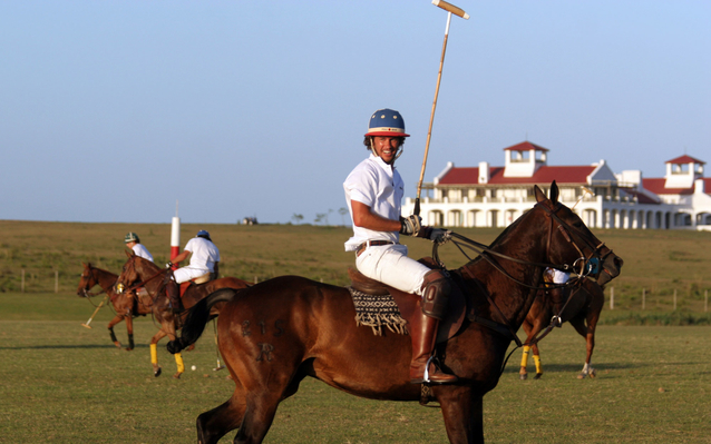 Vik Retreats polo