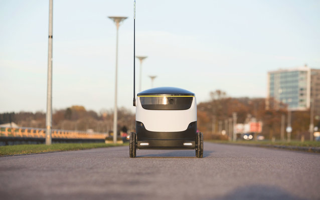 Robot Delivery System