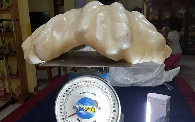 A fisherman kept a giant pearl under his bed for years.