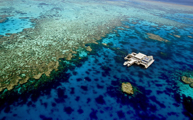 New Reef Under Great Barrier Reef