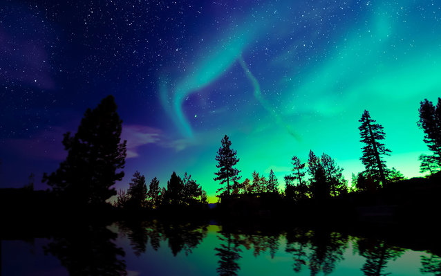 This train in Alaska will take you to see the Northern Lights.