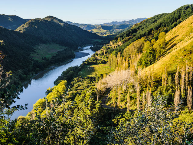 New Zealand's Whanganui River Has Been Granted the Same Legal Rights as a Person