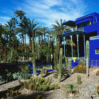 5 Best Parks in Marrakesh